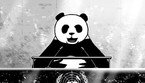 Il Panda chiede un New deal all'assemblea generale dell'Onu (ANSA)