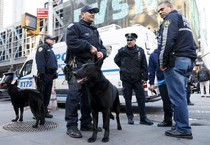 La polizia a New York (ANSA)